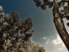 Vista panoramica della Penisola Sorrentina
