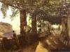 Terza versione di quadro raffigrante una veranda sorrentina attribuito a Scedrin