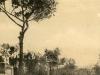 Tram a Sorrento019 (Meta affrancata nel 1914)